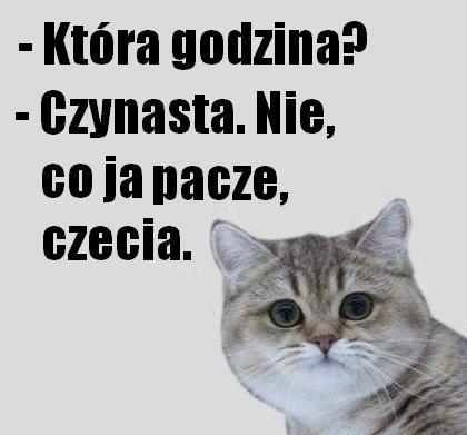 https://m.gadzetomania.pl/paczacz-czynasta-75665-53cb672c0,750,470,0,0.jpg